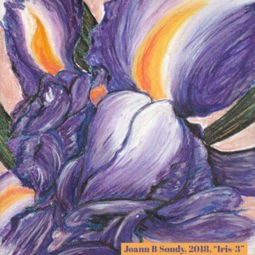 Pastel Painting: IRIS-03 (May 2018)